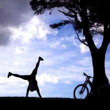 Performance Coaching Page Cartwheel image